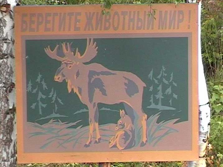 Lake Baikal nature reserve sign warning visitors for Moose