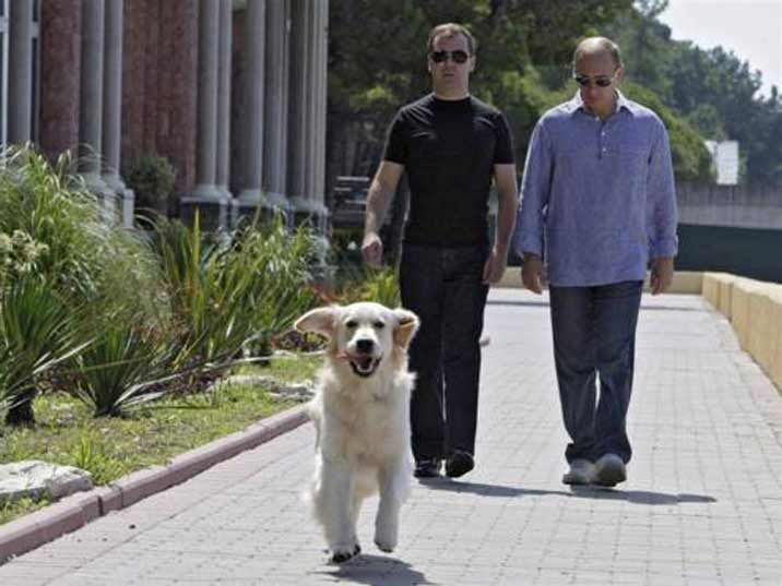 Putin with his buddy Medvedev as a bored gay couple with their Golden Retriever